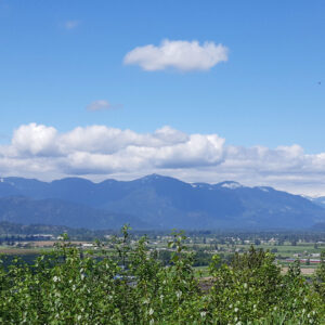 view from old marble hill road - scavenger hunt - chilliwack hiking trail