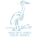 The Great Blue Heron Nature Reserve